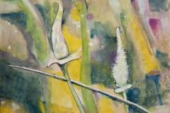 bez tytułu, 2010, 50 x 52 cm