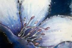 bez tytułu, 2005, 39 x 35 cm