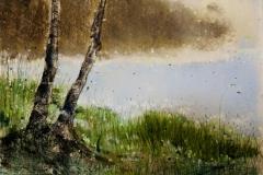 bez tytułu, 2011, 50 x 35 cm
