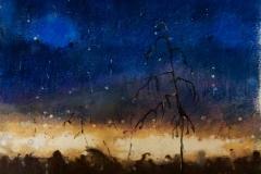 bez tytułu, 2007, 38 x 32 cm
