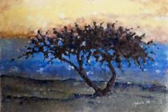 bez tytułu, 2010, 45 x 31 cm