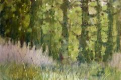 bez tytułu, 2010, 50 x 45 cm