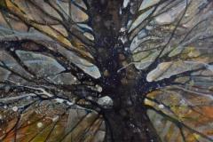 Drzewo, 2014
